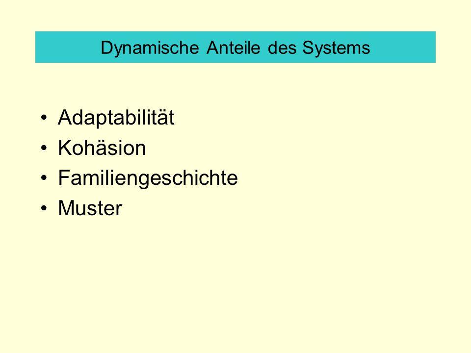 Dynamische Anteile des Systems Adaptabilität Kohäsion Familiengeschichte Muster