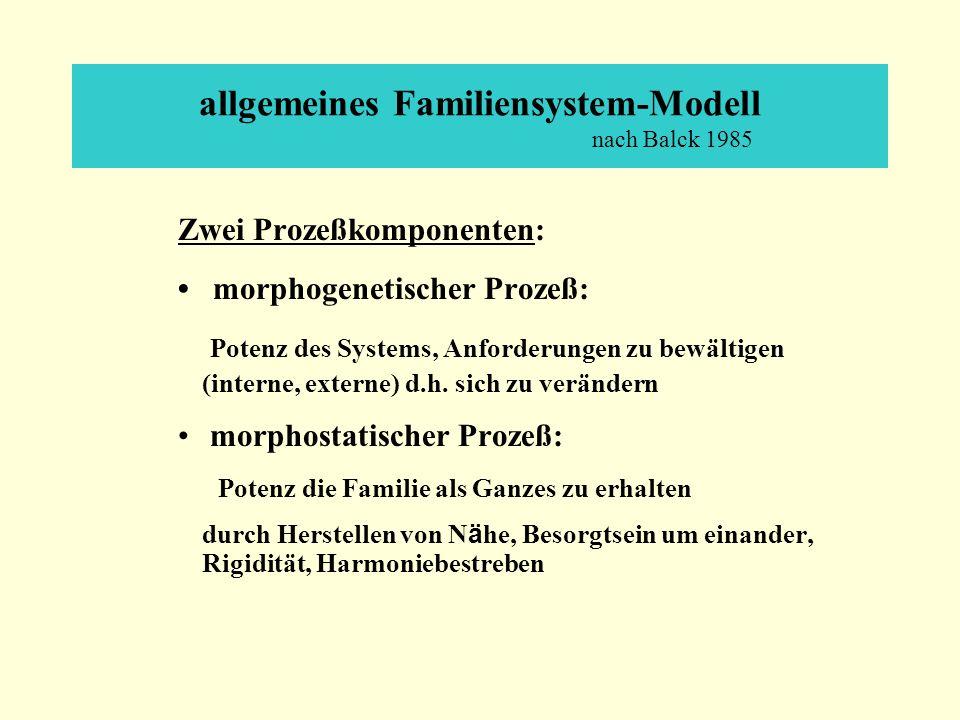 allgemeines Familiensystem-Modell nach Balck 1985 Zwei Prozeßkomponenten: morphogenetischer Prozeß: Potenz des Systems, Anforderungen zu bewältigen (interne, externe) d.h.