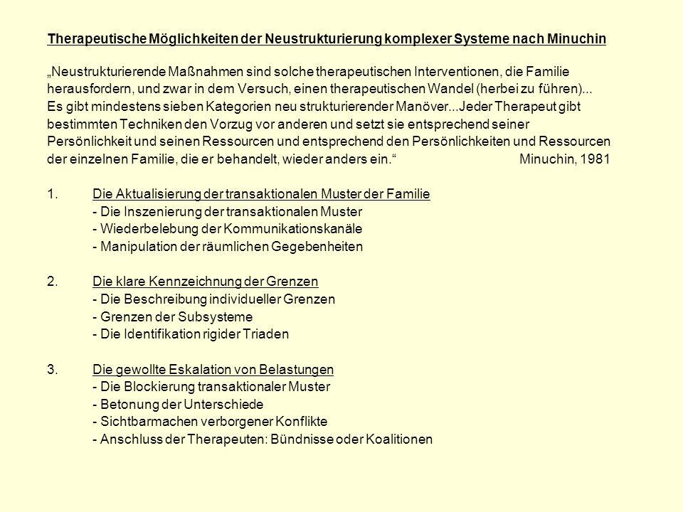 Therapeutische Möglichkeiten der Neustrukturierung komplexer Systeme nach Minuchin Neustrukturierende Maßnahmen sind solche therapeutischen Interventi