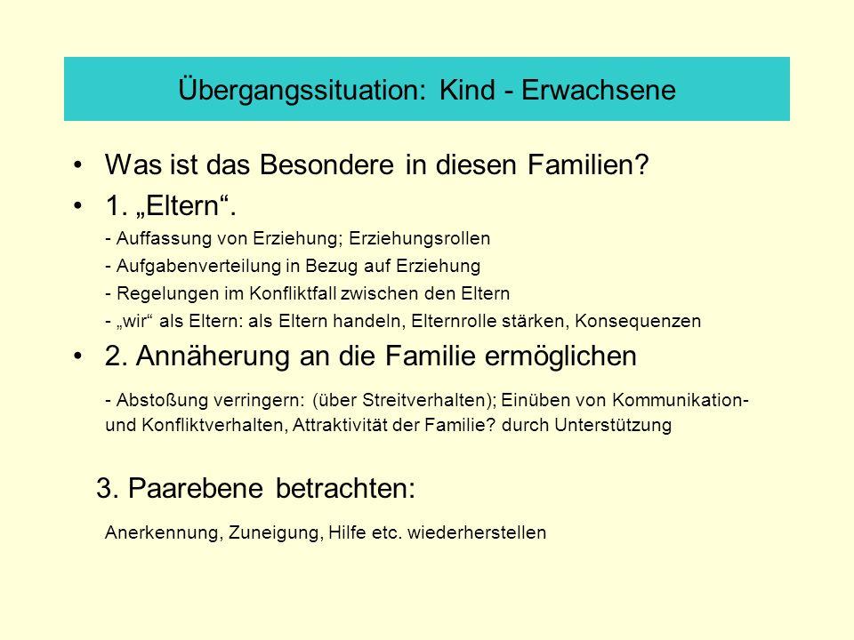 Übergangssituation: Kind - Erwachsene Was ist das Besondere in diesen Familien? 1. Eltern. - Auffassung von Erziehung; Erziehungsrollen - Aufgabenvert