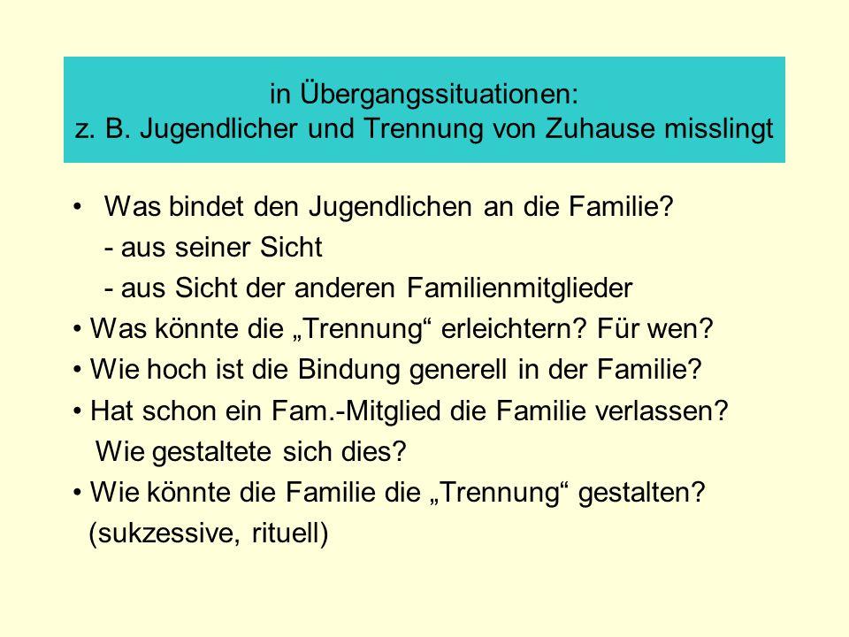 in Übergangssituationen: z. B. Jugendlicher und Trennung von Zuhause misslingt Was bindet den Jugendlichen an die Familie? - aus seiner Sicht - aus Si