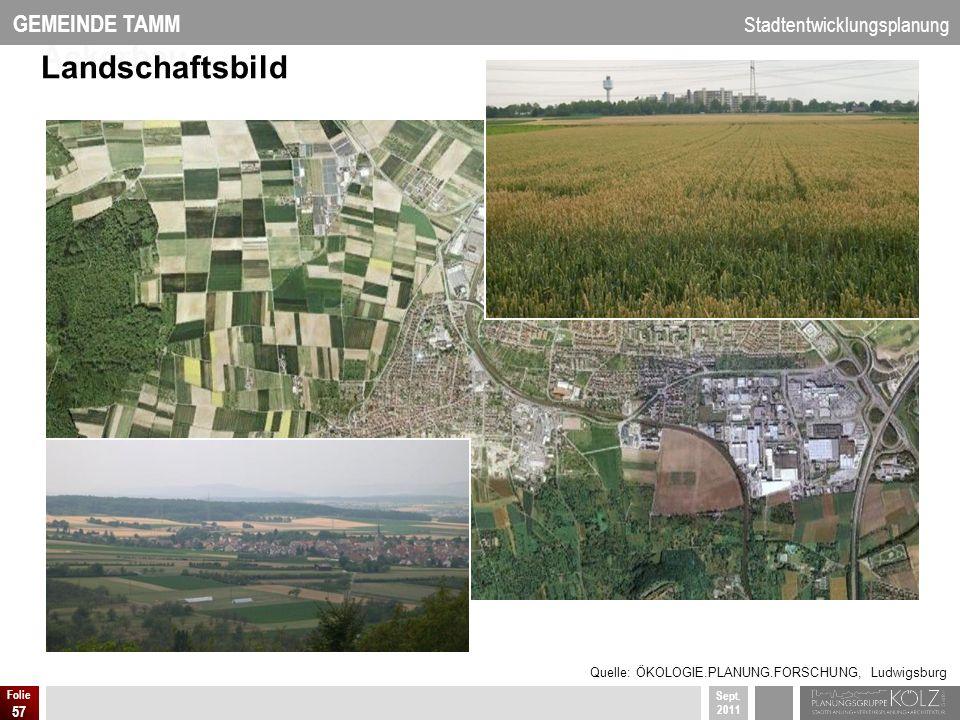 GEMEINDE TAMM Stadtentwicklungsplanung Sept. 2011 Folie 57 Ackerbau Landschaftsbild Quelle: ÖKOLOGIE.PLANUNG.FORSCHUNG, Ludwigsburg