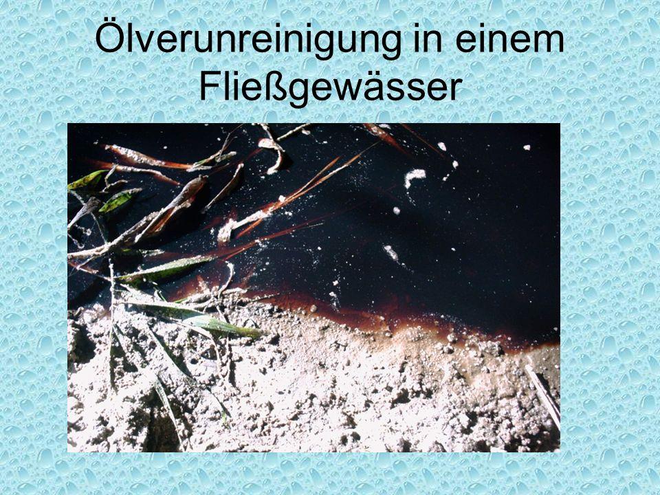 Ölverunreinigung in einem Fließgewässer