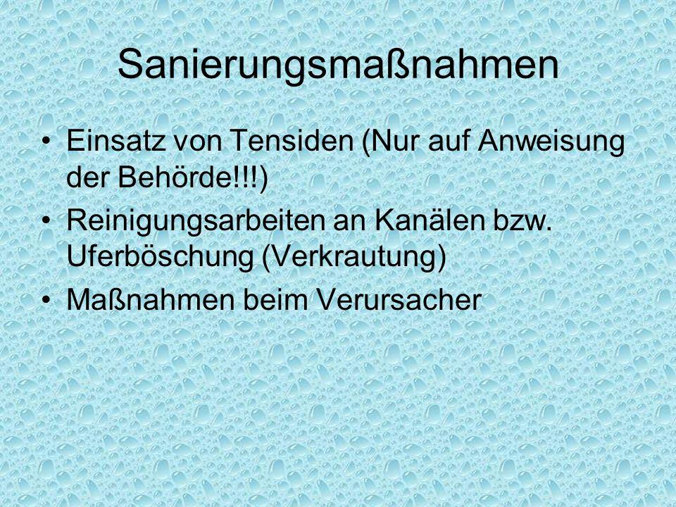 Sanierungsmaßnahmen Einsatz von Tensiden (Nur auf Anweisung der Behörde!!!) Reinigungsarbeiten an Kanälen bzw. Uferböschung (Verkrautung) Maßnahmen be