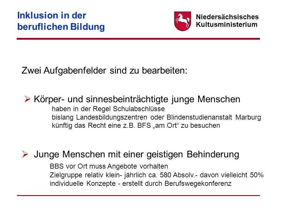 Niedersächsisches Kultusministerium Zwei Aufgabenfelder sind zu bearbeiten: Inklusion in der beruflichen Bildung Körper- und sinnesbeinträchtigte jung