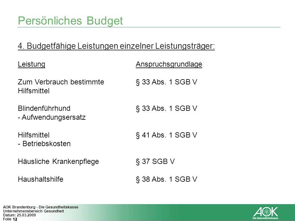12 AOK Brandenburg - Die Gesundheitskasse Unternehmensbereich Gesundheit Datum: 25.03.2009 Folie 12 Persönliches Budget 4. Budgetfähige Leistungen ein