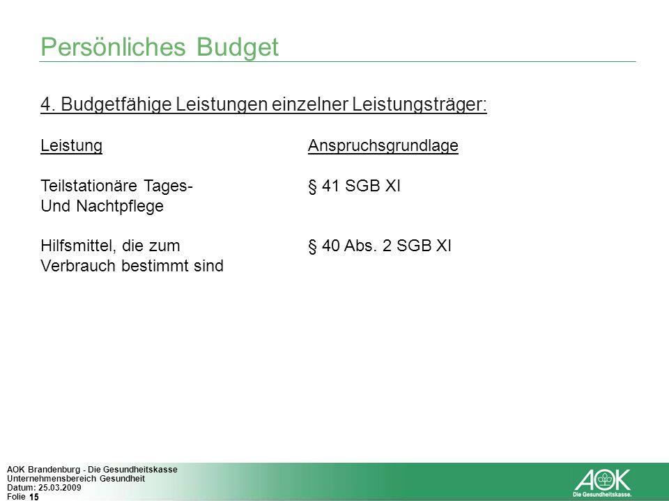 15 AOK Brandenburg - Die Gesundheitskasse Unternehmensbereich Gesundheit Datum: 25.03.2009 Folie 15 Persönliches Budget 4. Budgetfähige Leistungen ein