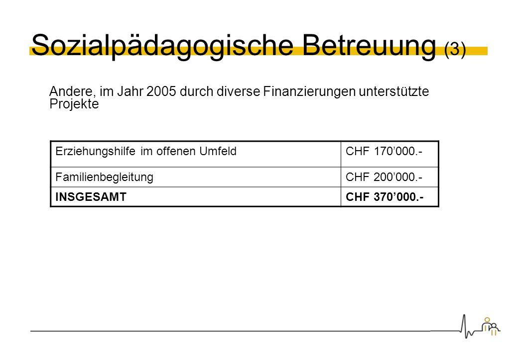 Sozialpädagogische Betreuung (3) Andere, im Jahr 2005 durch diverse Finanzierungen unterstützte Projekte Erziehungshilfe im offenen UmfeldCHF 170000.-