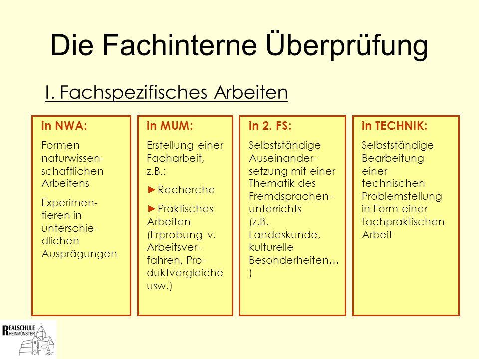Die Fachinterne Überprüfung III.