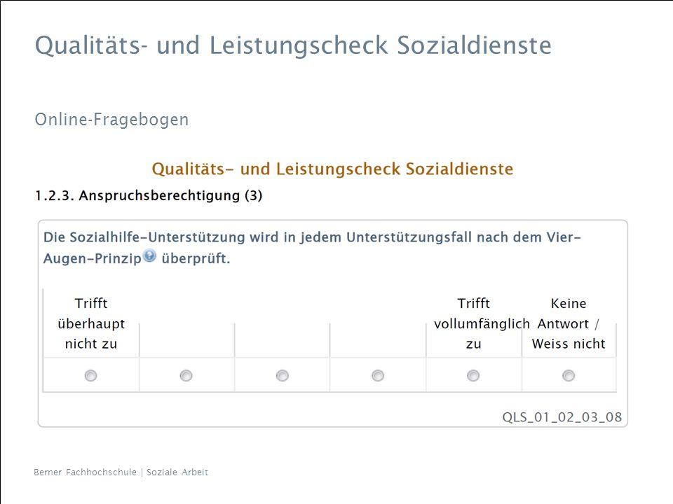 Qualitäts- und Leistungscheck Sozialdienste Online-Fragebogen