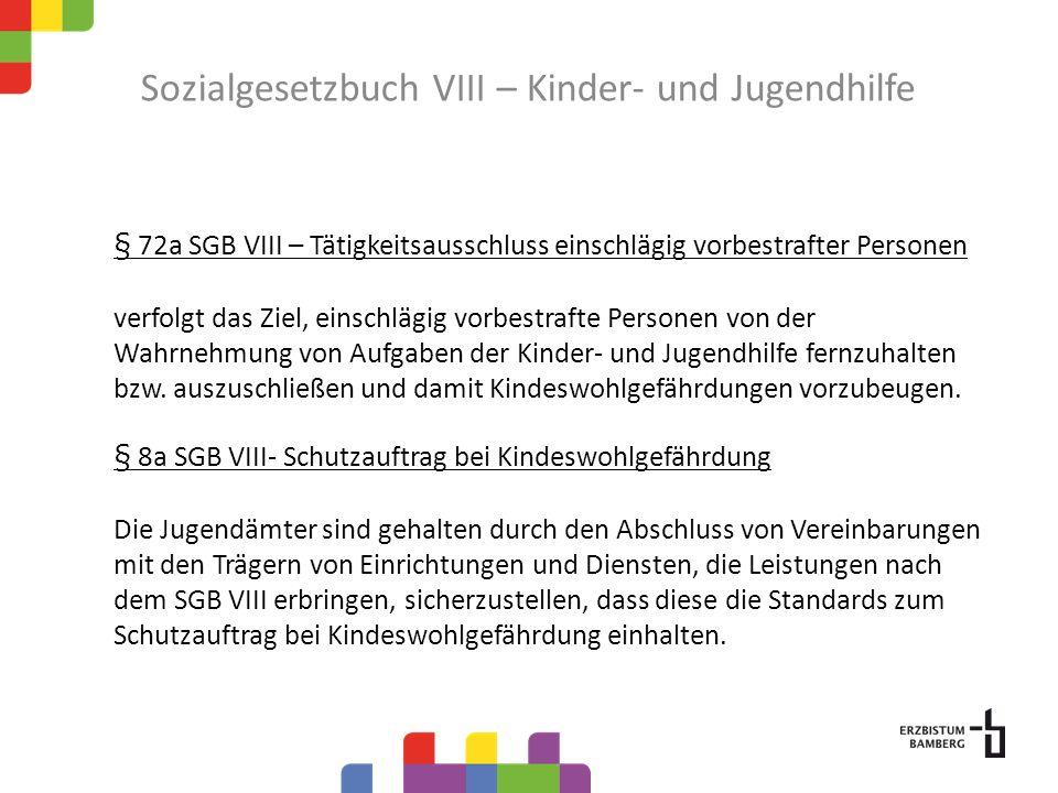 Sozialgesetzbuch VIII – Kinder- und Jugendhilfe Maßnahmen der Kinder- und Jugendhilfe Jugendschutz Jugendsozialarbeit Erziehung in der Familie (z.B.