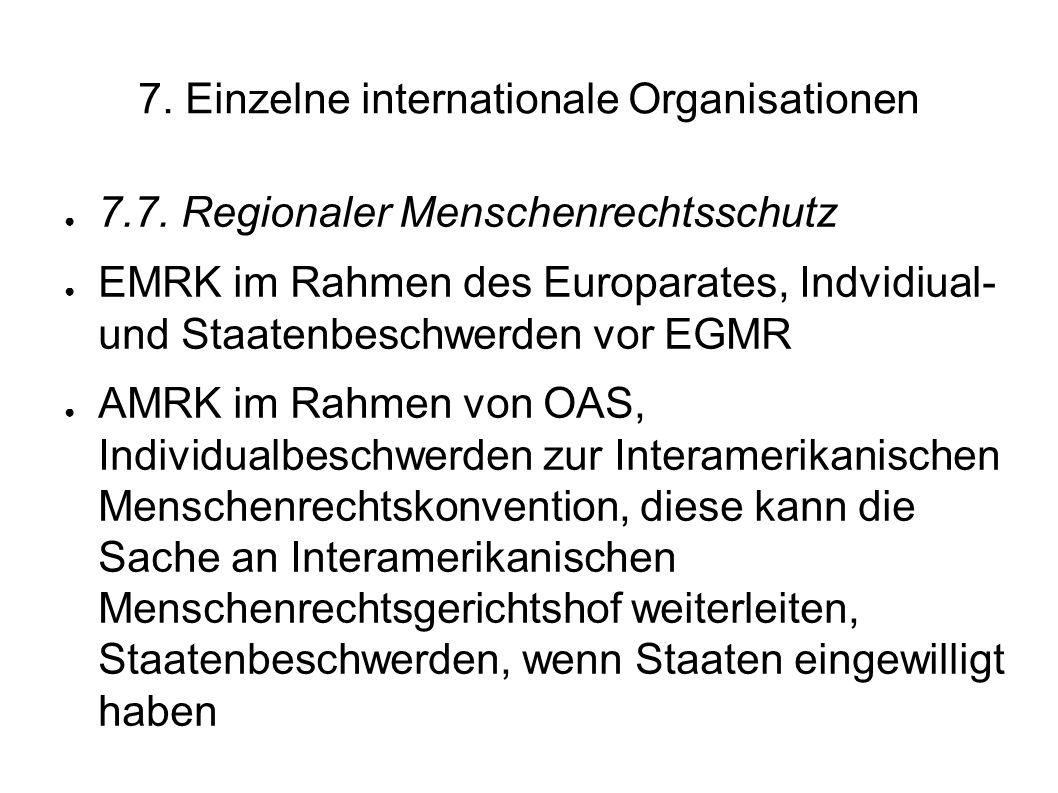 7.Einzelne internationale Organisationen 7.7.