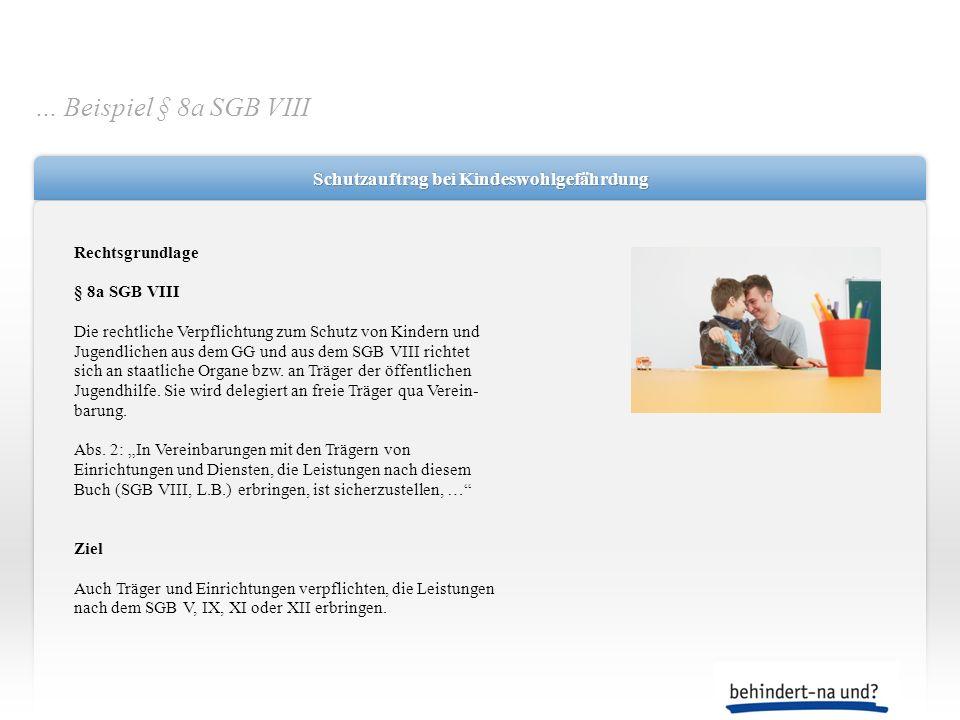 Schutzauftrag bei Kindeswohlgefährdung Rechtsgrundlage § 8a SGB VIII Die rechtliche Verpflichtung zum Schutz von Kindern und Jugendlichen aus dem GG u