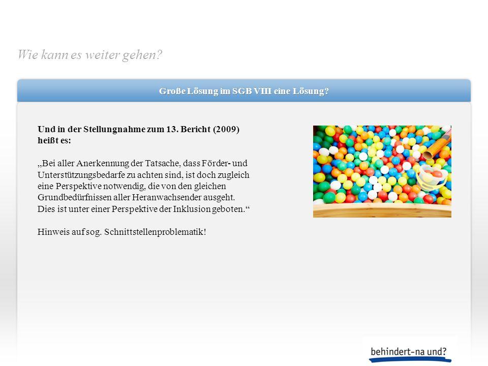 Große Lösung im SGB VIII eine Lösung? Und in der Stellungnahme zum 13. Bericht (2009) heißt es: Bei aller Anerkennung der Tatsache, dass Förder- und U