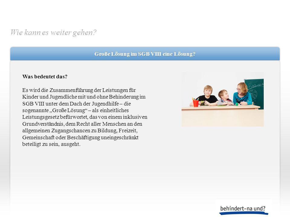 Große Lösung im SGB VIII eine Lösung? Was bedeutet das? Es wird die Zusammenführung der Leistungen für Kinder und Jugendliche mit und ohne Behinderung