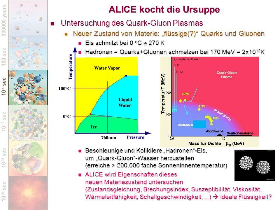 Untersuchung des Quark-Gluon Plasmas Untersuchung des Quark-Gluon Plasmas Neuer Zustand von Materie: flüssige(?) Quarks und Gluonen Neuer Zustand von