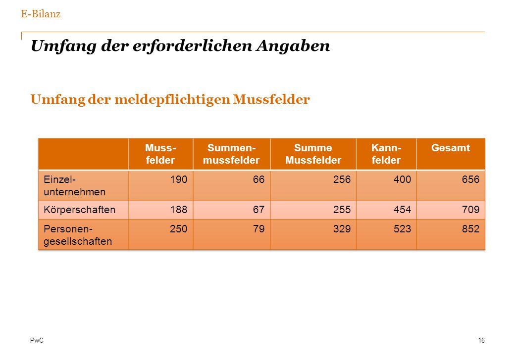 PwC Umfang der erforderlichen Angaben Umfang der meldepflichtigen Mussfelder 16 E-Bilanz