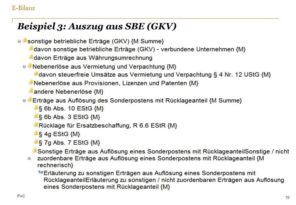 PwC Beispiel 3: Auszug aus SBE (GKV) 19 E-Bilanz