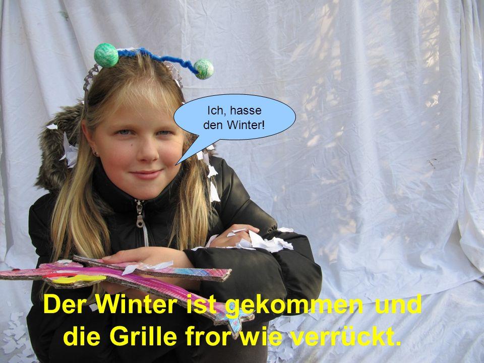 Ich, hasse den Winter! Der Winter ist gekommen und die Grille fror wie verrückt.
