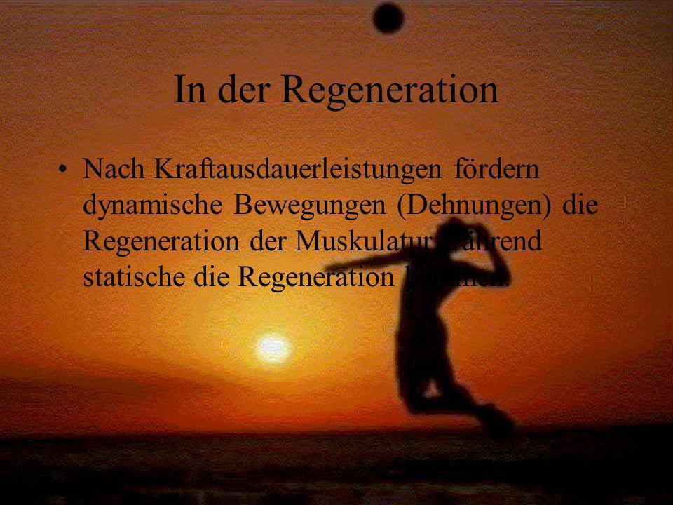 In der Regeneration Nach Kraftausdauerleistungen fördern dynamische Bewegungen (Dehnungen) die Regeneration der Muskulatur während statische die Regen