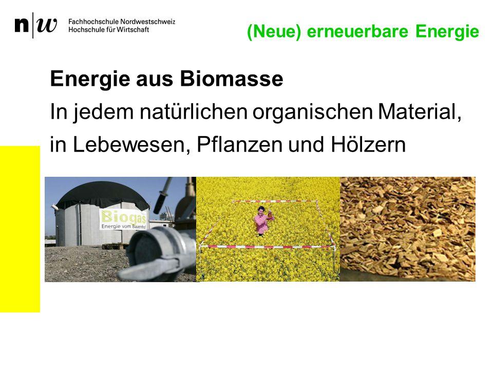 (Neue) erneuerbare Energie Energie aus Biomasse In jedem natürlichen organischen Material, in Lebewesen, Pflanzen und Hölzern