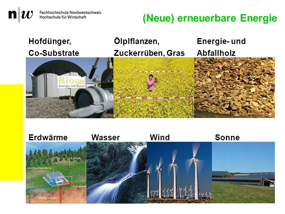 (Neue) erneuerbare Energie Hofdünger, Co-Substrate Ölplflanzen, Zuckerrüben, Gras Energie- und Abfallholz ErdwärmeWindSonneWasser