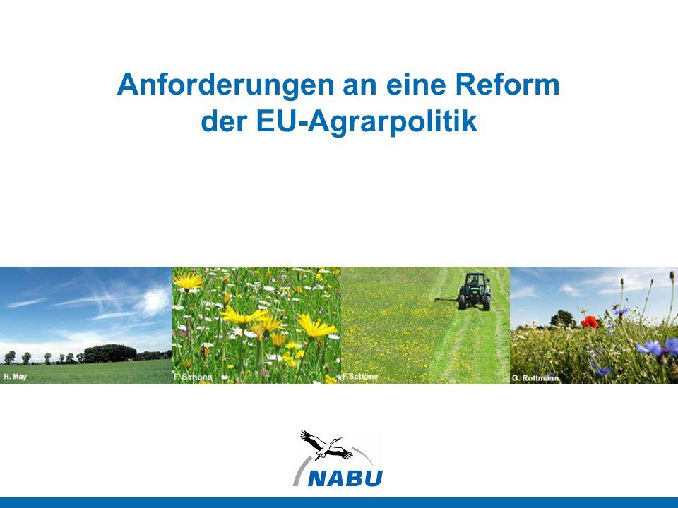 Hintergrund: EU-Agrarpolitik Agrarpolitische Weichenstellungen erfolgen in Brüssel Europäische Landwirtschaft erhält enorme Subventionen Agrarhaushalt 2010: 59,5 Milliarden Euro (74% Direktzahlungen, 26% Entwicklung des ländlichen Raums) Neuausrichtung der EU-Agrarpolitik, um Wettbewerbsfähigkeit zu halten EU-Kommission: Nachhaltige Nutzung der natürlichen Ressourcen und Bekämpfung des Verlustes biologischer Vielfalt gehören dazu 2 Anforderungen an die Agrarreform Ort | Tag.