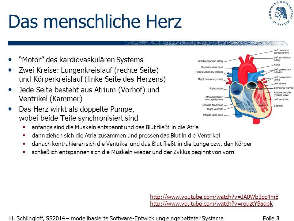 Folie 3 H. Schlingloff, SS2014 – modellbasierte Software-Entwicklung eingebetteter Systeme Das menschliche Herz Motor des kardiovaskulären Systems Zwe