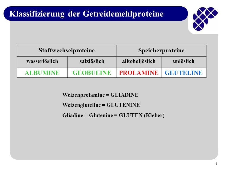 8 Klassifizierung der Getreidemehlproteine Weizenprolamine = GLIADINE Weizengluteline = GLUTENINE Gliadine + Glutenine = GLUTEN (Kleber) StoffwechselproteineSpeicherproteine wasserlöslichsalzlöslichalkohollöslichunlöslich ALBUMINEGLOBULINEPROLAMINEGLUTELINE