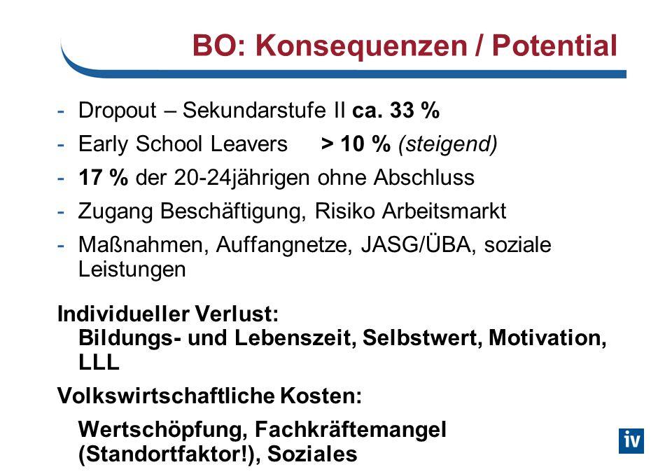 BO: Konsequenzen / Potential -Dropout – Sekundarstufe II ca. 33 % -Early School Leavers > 10 % (steigend) -17 % der 20-24jährigen ohne Abschluss -Zuga