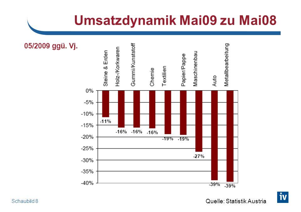 Schaubild 8 Umsatzdynamik Mai09 zu Mai08 Quelle: Statistik Austria