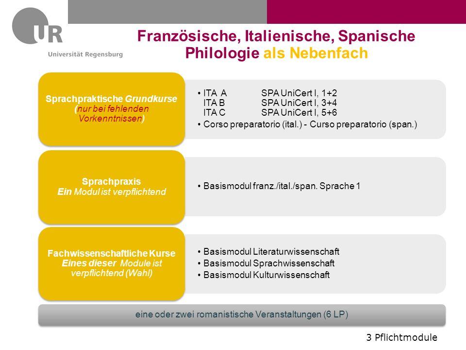 SPA I, 1+2 SPA I, 3+4 SPA 1, 5+6 Curso preparatorio (span.) Grundkurse (nur bei fehlenden Vorkenntnissen) Basismodul frz.