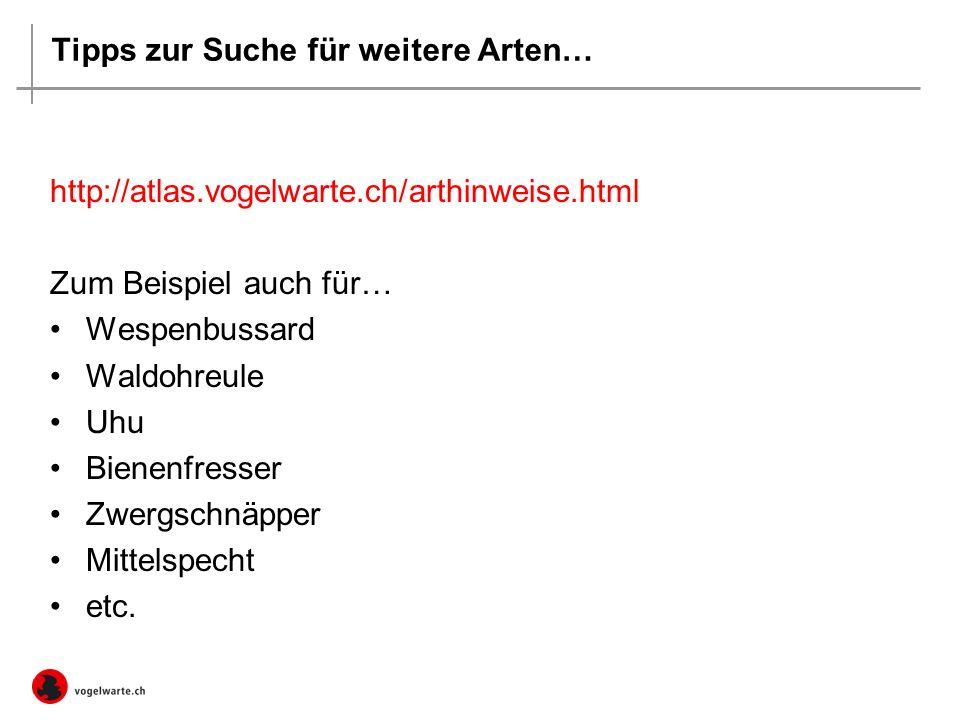Tipps zur Suche für weitere Arten… http://atlas.vogelwarte.ch/arthinweise.html Zum Beispiel auch für… Wespenbussard Waldohreule Uhu Bienenfresser Zwergschnäpper Mittelspecht etc.