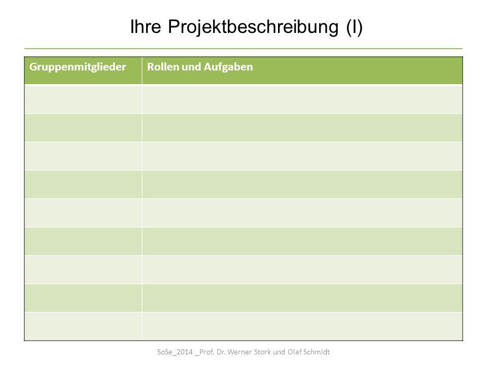 GruppenmitgliederRollen und Aufgaben Ihre Projektbeschreibung (I) SoSe_2014 _Prof. Dr. Werner Stork und Olaf Schmidt