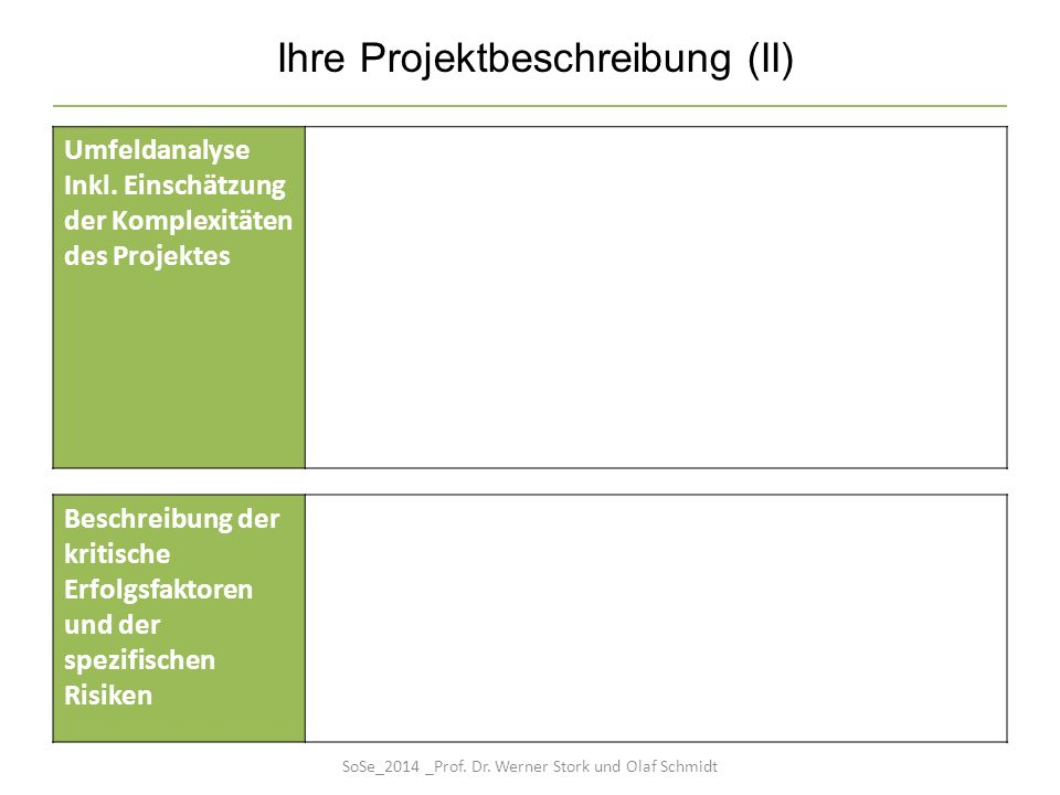 Ihre Projektbeschreibung (II) Umfeldanalyse Inkl. Einschätzung der Komplexitäten des Projektes Beschreibung der kritische Erfolgsfaktoren und der spez
