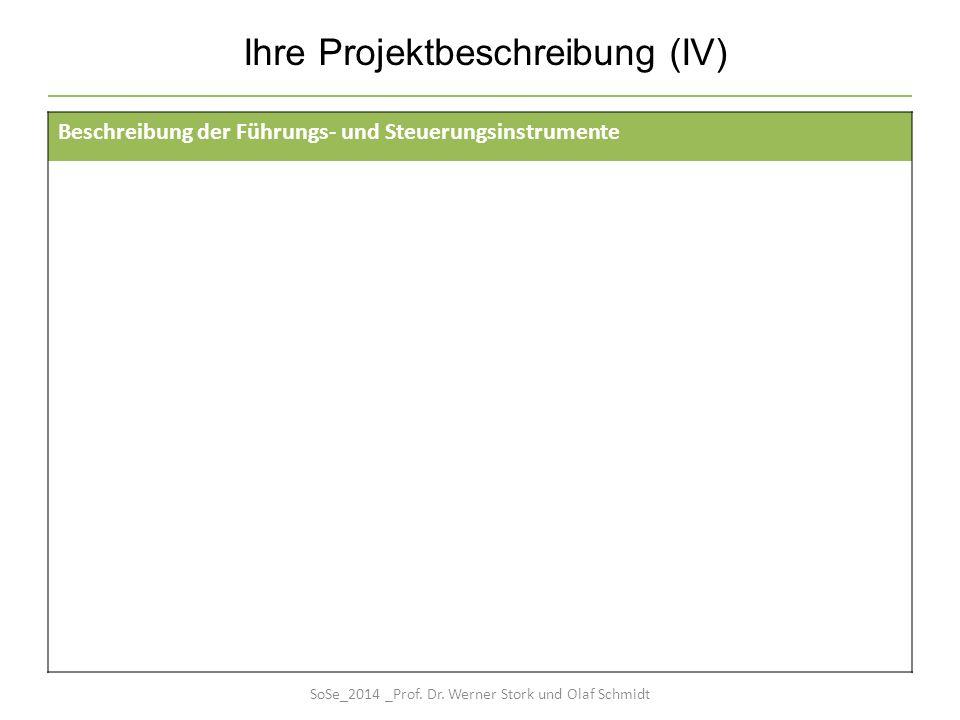 Ihre Projektbeschreibung (IV) Beschreibung der Führungs- und Steuerungsinstrumente SoSe_2014 _Prof. Dr. Werner Stork und Olaf Schmidt