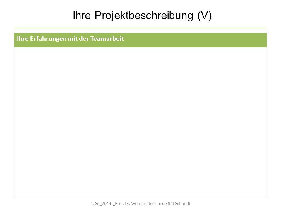 Ihre Projektbeschreibung (V) Ihre Erfahrungen mit der Teamarbeit SoSe_2014 _Prof. Dr. Werner Stork und Olaf Schmidt