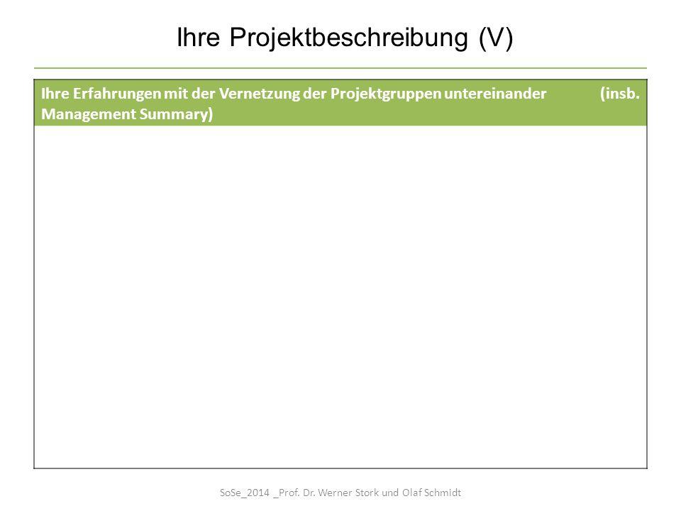 Ihre Projektbeschreibung (V) Ihre Erfahrungen mit der Vernetzung der Projektgruppen untereinander (insb. Management Summary) SoSe_2014 _Prof. Dr. Wern