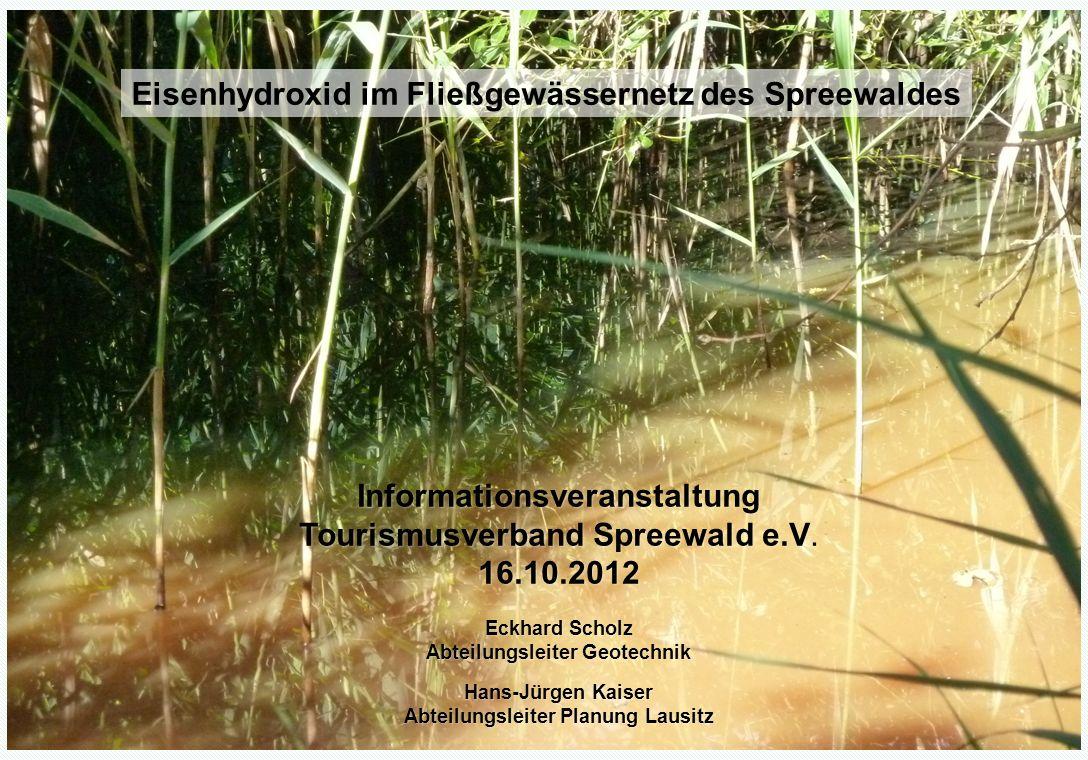 1 Eisenhydroxid im Fließgewässersystem Spreewald - 16.10.2012 Verockerung des Fließgewässernetzes im Spreewald Informationsveranstaltung Tourismusverb