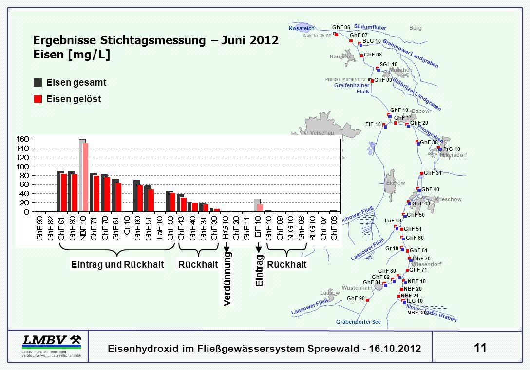 11 Eisenhydroxid im Fließgewässersystem Spreewald - 16.10.2012 Ergebnisse Stichtagsmessung – Juni 2012 Eisen [mg/L] Babow Eichow Krieschow Müschen Bur