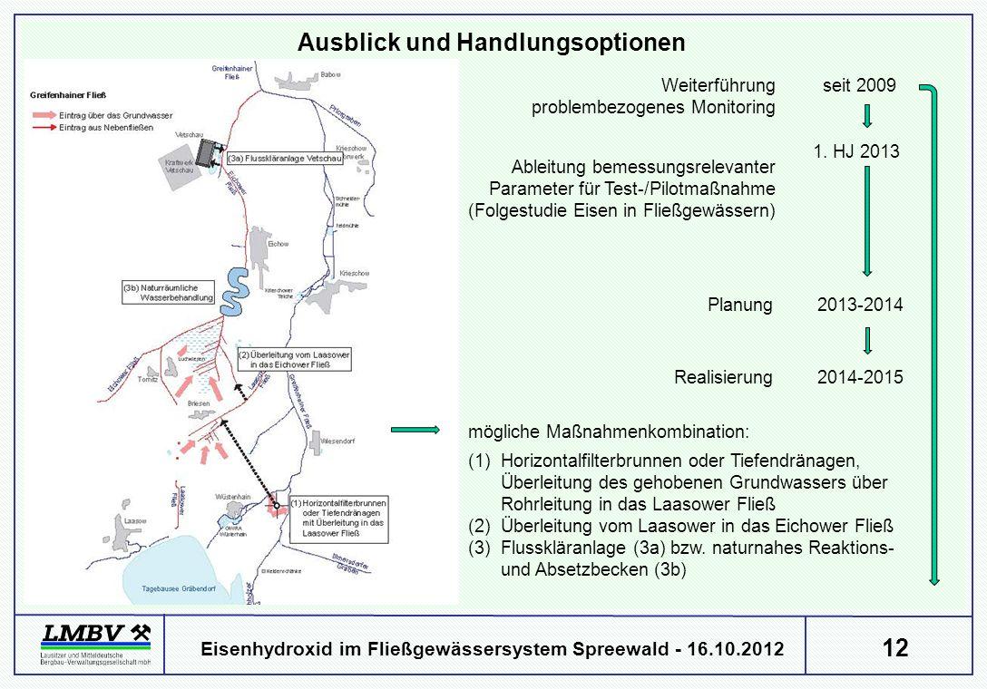 12 Eisenhydroxid im Fließgewässersystem Spreewald - 16.10.2012 Ausblick und Handlungsoptionen Weiterführung problembezogenes Monitoring Ableitung beme