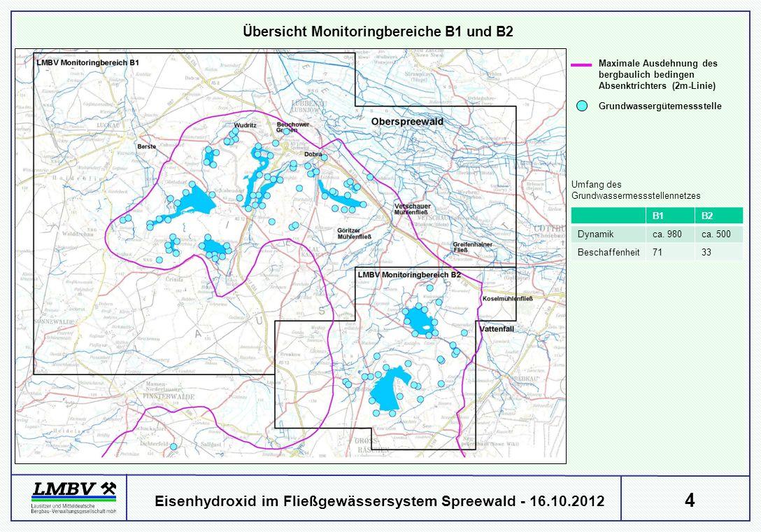 4 Eisenhydroxid im Fließgewässersystem Spreewald - 16.10.2012 Übersicht Monitoringbereiche B1 und B2 Maximale Ausdehnung des bergbaulich bedingen Absenktrichters (2m-Linie) Umfang des Grundwassermessstellennetzes B1B2 Dynamikca.