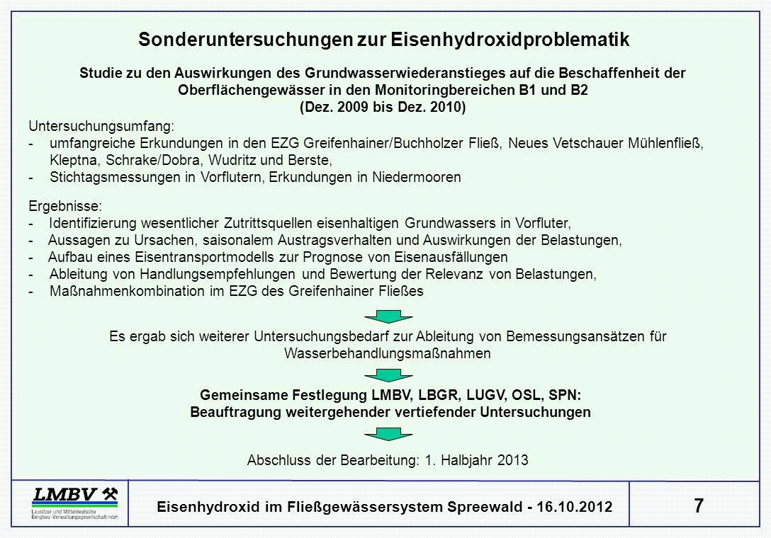 7 Eisenhydroxid im Fließgewässersystem Spreewald - 16.10.2012 Studie zu den Auswirkungen des Grundwasserwiederanstieges auf die Beschaffenheit der Oberflächengewässer in den Monitoringbereichen B1 und B2 (Dez.