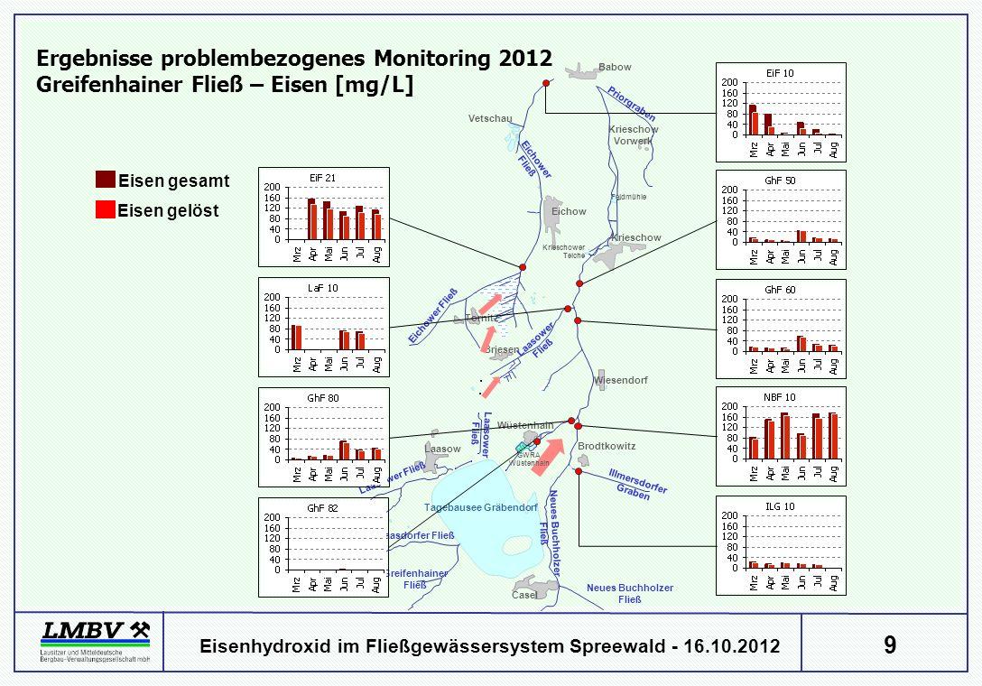 9 Eisenhydroxid im Fließgewässersystem Spreewald - 16.10.2012