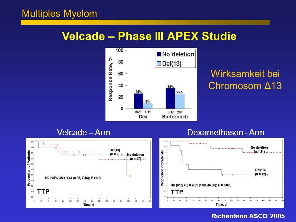 Multiples Myelom Velcade – Arm Dexamethason - Arm Velcade – Phase III APEX Studie Wirksamkeit bei Chromosom Δ13 Richardson ASCO 2005 TTP
