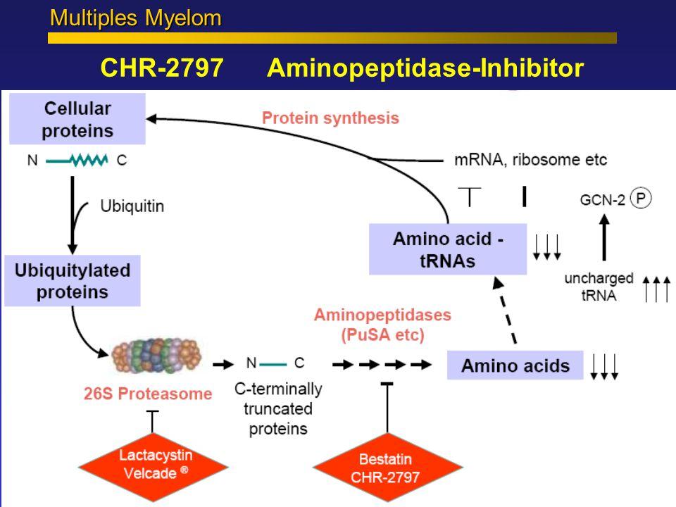 CHR-2797 Aminopeptidase-Inhibitor Multiples Myelom