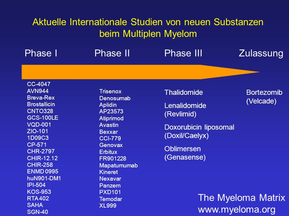 Phase IPhase IIPhase IIIZulassung Bortezomib (Velcade) Thalidomide Lenalidomide (Revlimid) Doxorubicin liposomal (Doxil/Caelyx) Oblimersen (Genasense)