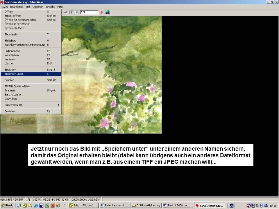 Hier sichern wir das Bild unter CocoInnesteklein.jpg (unter Dateityp könnten auch wie gerade schon erwähnt, andere Dateiformate gewählt werden).