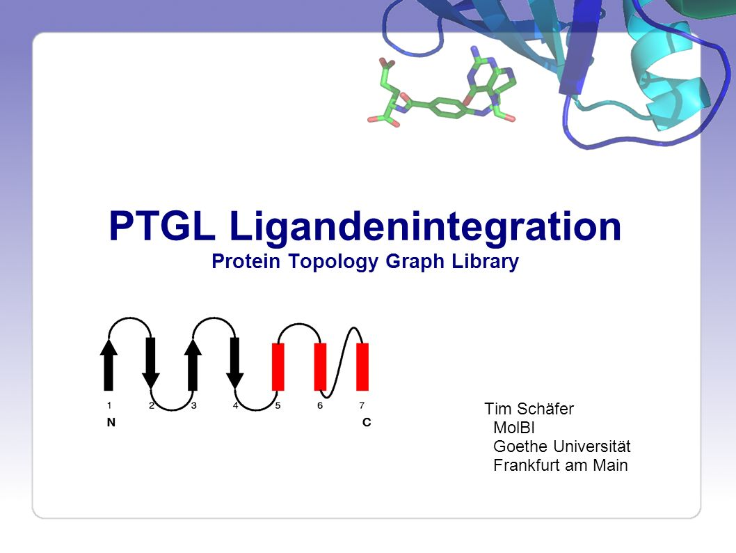 PTGL Ligandenintegration Protein Topology Graph Library Tim Schäfer MolBI Goethe Universität Frankfurt am Main