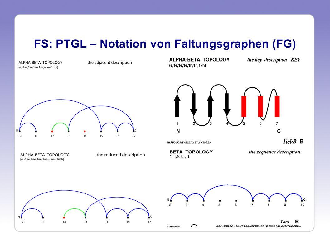 PTGL - Substruktursuche Unverzweigte Faltungsgraphen (Grad aller Knoten <= 2) Die dargestellten eindeutigen linearen Notationen ermöglichen eine Suche nach Substrukturen über Stringvergleich Verzweigte Faltungsgraphen Besitzen SSEs, die Kontakte mit > 2 räumlichen Nachbarn haben Anpassungen der Notation für ADJ, RED, SEQ KEY-Notation ist hier nicht möglich, da es keine eindeutige räumliche Folge der SSEs gibt Finden von Teilstrukturen nicht mehr durch Stringsuche möglich, daher müssen graphtheoretische Methoden genutzt werden => Finden von maximalen gemeinsamen Teilgraphen